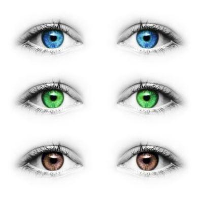 examen iridologie